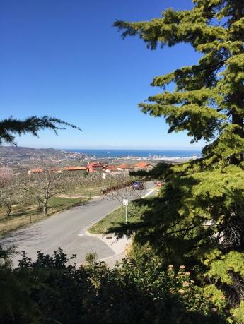 Razgled iz Marezig na Koprski zaliv